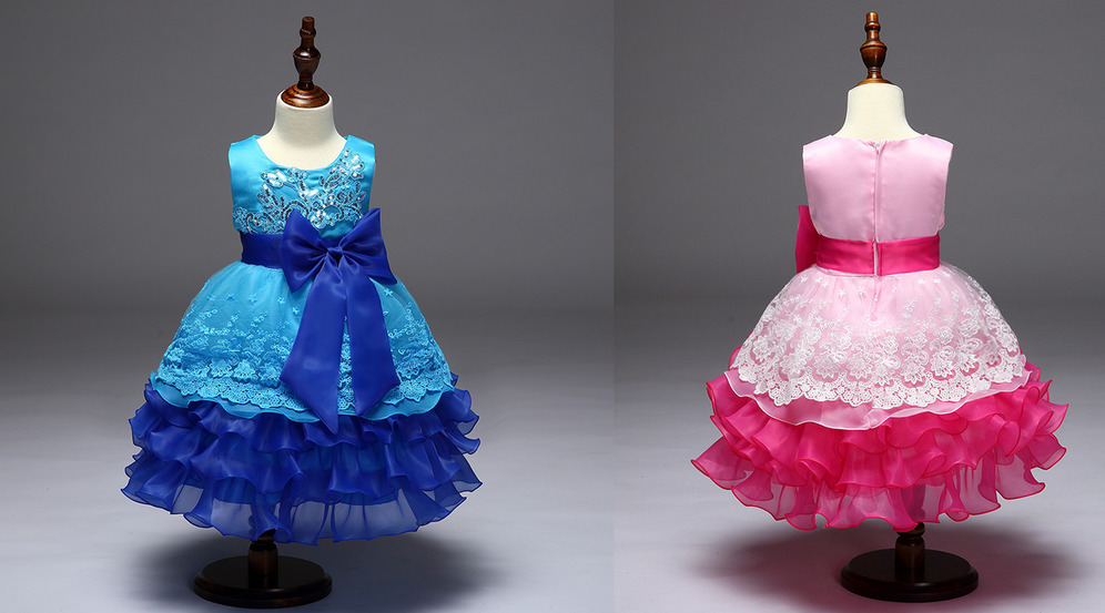Jewel Zipper Up Lace Organza Natural Waist Princess Flower Girl Dress